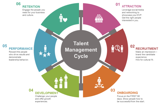 service talent cycle Effective talent management (tm) is a top priority in organizations everywhere  i will focus on the learning and development piece of the high-performance integrated talent management framework (itm)  (a flipped classroom inverts the typical cycle of content acquisition and application so learners gain the necessary knowledge before.